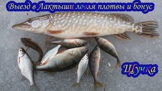 Брестской области рыбалка на озере гать в