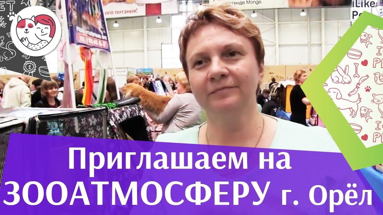 Приглашение на ЗООАТМОСФЕРУ в  Орле ilikepet