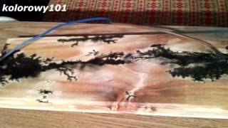 Wood burning With Lightning. Lichtenberg Figures!