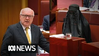 George Brandis slams Pauline Hanson for wearing a burka to Question Time in the Senate | ABC News