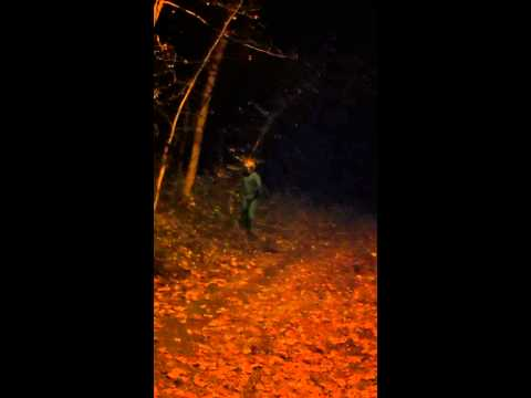 Scary Encounter with Alien caught on tape