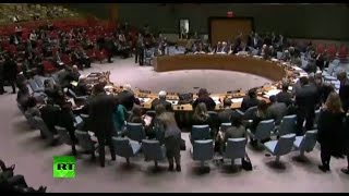 Заседание Совета Безопасности ООН по ситуации на Украине фото