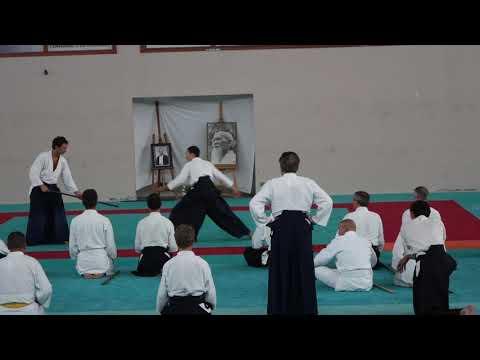 Aikido Stage Lesneven 2015 Dufau Kentaichi
