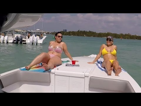 Miami Sandbar