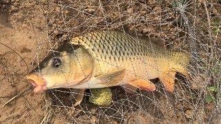Рыбалка на ахтубе у села селитренное