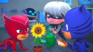 PJ Masks get turned into Babies! 🍼 PJ Masks Official