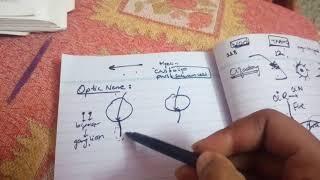 OPTIC NERVE complete description in easiest way