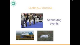 AKC Breeder Webinar: Are you ready to breed a litter?