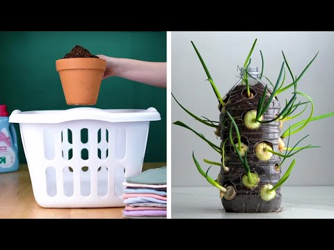 These Clever Tricks Will Turn Everyone into a Pro Gardener
