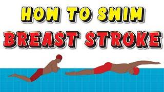 How to Swim BREASTSTROKE : Breaststroke Swimming Technique EXPLAINED