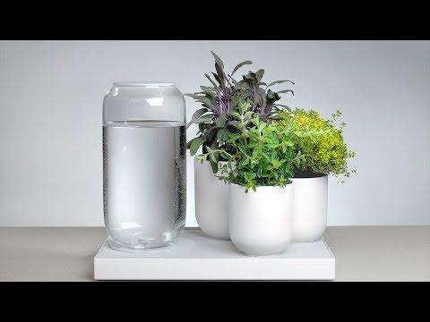Простые и удобные способы самополива комнатных растений.