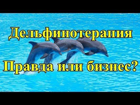 Дельфинотерапия. Правда или бизнес?