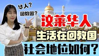 解锁【汶莱华人】如何在神秘又严格的回教国生存?华人有社会地位吗?全国都是土豪?【这点小事 EP44】