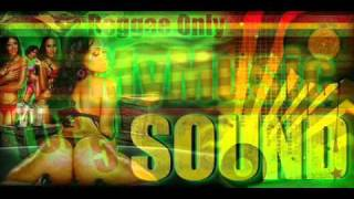 Chris Brown Feat. Keri Hilson - Superhuman Reggae Remix