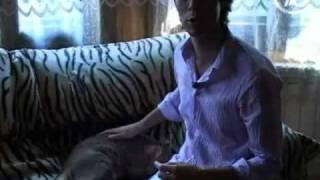 """""""Хочу знать!"""" с Михаилом Ширвиндтом, """"Хочу знать"""". Дикие животные в квартире (Марк Тишман)"""