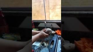 Preparação língua de boi assada churrasqueira elétrica(1)
