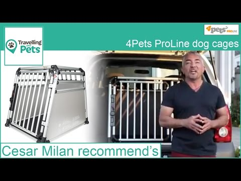 Why buy a 4Pets PRO Cage?