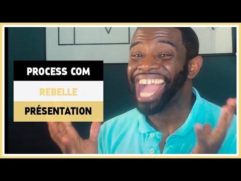 Personnalité rebelle de la process communication