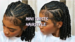 Mini Twists Protective Hairstyle For Natural Curly Hair