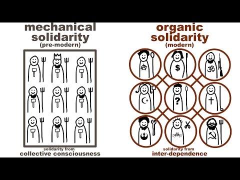 organic solidarity society