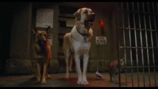 Кошки против собак | Cats & Dogs- Трейлер 2