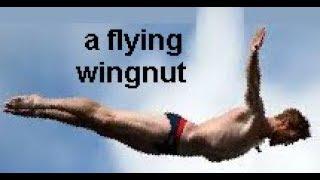 tennis racket  wingnut Dzhanibekov pole shift high diver bullet intermediate axis effect