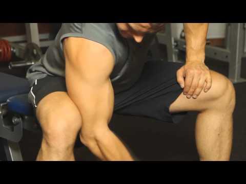 Szybko i wolno włókna mięśniowe