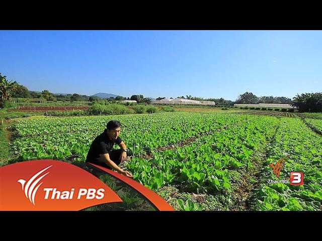 ทั่วถิ่นแดนไทย : เกษตรสร้างสุข โครงการส่งเสริมกสิกรรมไร้สารพิษตามโครงการพระราชดำริ จ.นครราชสีมา