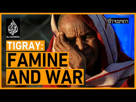 🇪🇹  Will a humanitarian crisis destroy Tigray? | The Stream