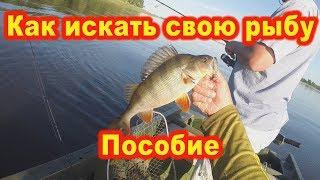 Пособия для ловли рыбы