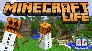 A Whole New World - The Minecraft Life - Bro Gaming