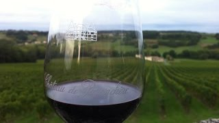 preview picture of video 'Traveling in Bordeaux Wine Tours & Top Travel Tips'