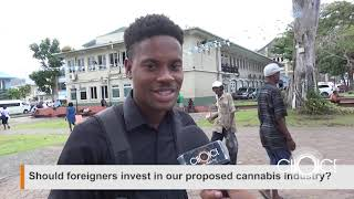 Should Foreigners Invest In Cannabis
