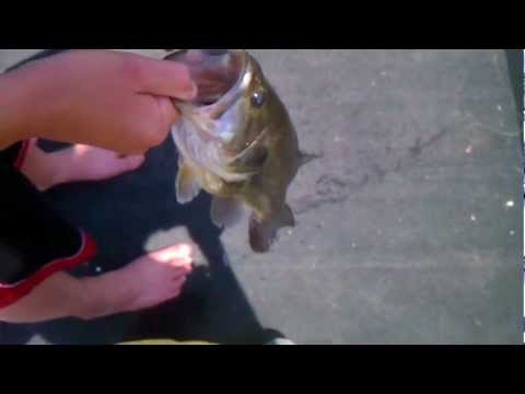 RCF: Pond Fishing Ep.1: Nice Big Bass
