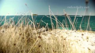 Peaceful, Soothing Background Music Instrumental - relaxdaily N°052 (flow)