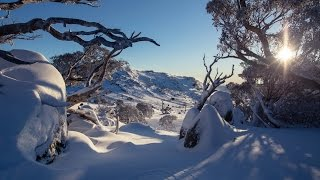 Who says there's no friends on a powder day at Perisher!