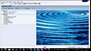 SAP PS Online Training (Overview) | Video Class | Tutorials - Monster Trainings