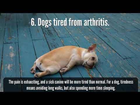 Arthritis Ellenbogen Behandlungsmittel