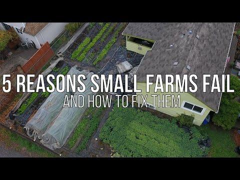 , title : 'FIVE REASONS SMALL FARMS FAIL!!