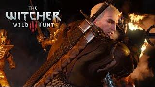 VideoImage1 The Witcher 3: Wild Hunt. Активация GOG