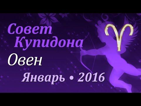 Гороскоп девы женщины 2015