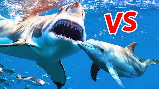Why Megalodon Would Fear Dolphins Today