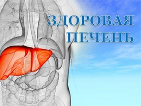 Лечение печени после интоксикации