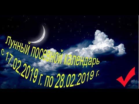 Лунный посевной календарь с 17.02.2019 года по 28.02.2019 года