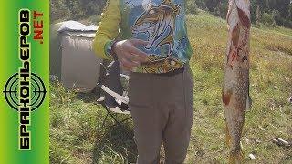 Рыбалка на квх бирюсинский залив