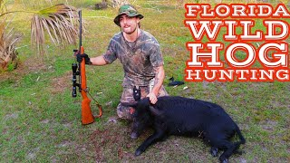 Wild Hog Hunting In Central Florida