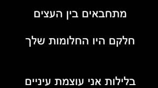 """""""פרחים בכרמל"""" שירה של נועה בוקר בתו של ליאור ז""""ל מנישואים קודמים"""