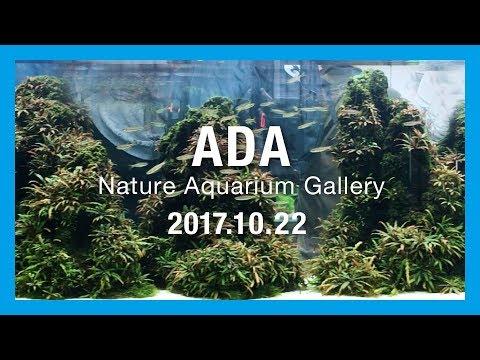 【ADA Nature Aquarium Gallery】ADA ネイチャーアクアリウムギャラリー