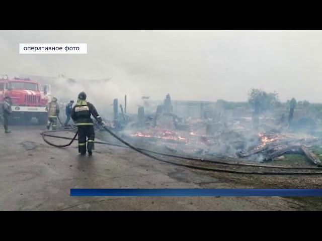 Пятеро детей погибли в пожарах