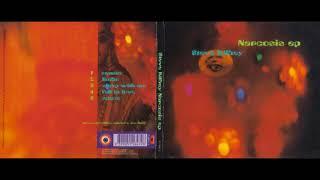 Steve Kilbey - Fall In Love  (1991)